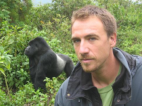 Rencontre imprevue entre un groupe de gorilles et des touristes